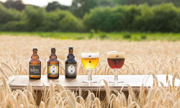 Brouwerij Dilewyns - Vicaris