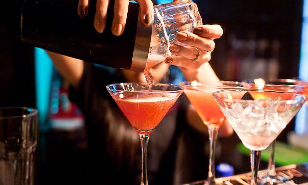 Cocktailworkshop (1,5 uur) + bittergarnituur