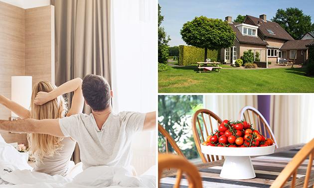 ccc81bd3e68 Bed & Breakfast De Tomaat, 1 overnachting + ontbijt voor 2 of 4 ...
