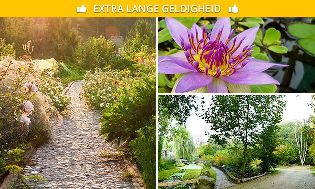 Entree Botanische Tuin TU Delft