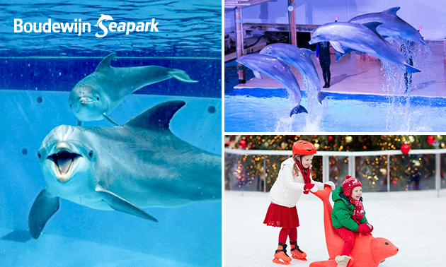 Winterticket voor Boudewijn Seapark