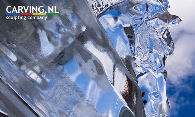 Workshop icecarving (75 min)