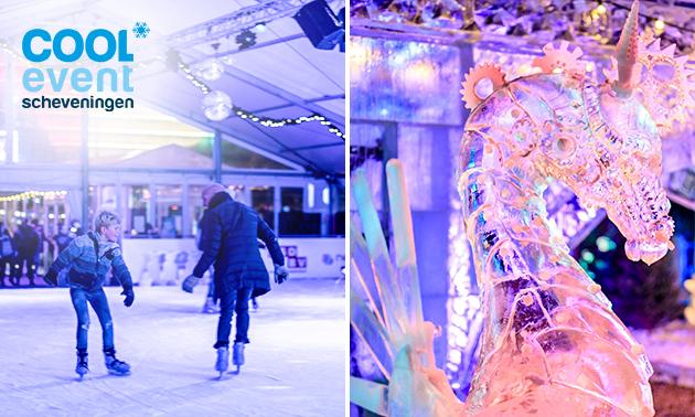 Schaatsen en/of ijssculpturenexpositie + warme choco