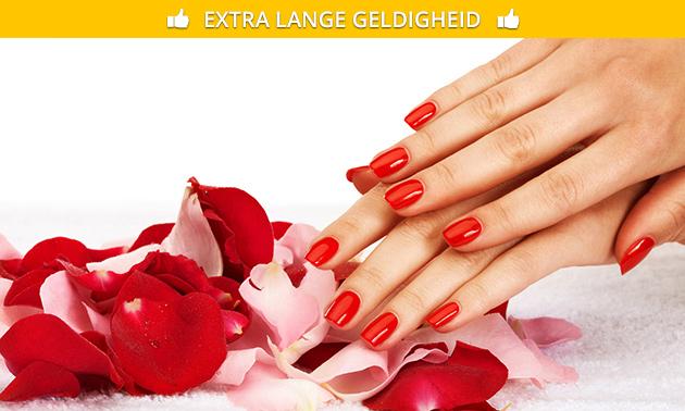 Mini-manicurebehandeling + gellak (45 min)