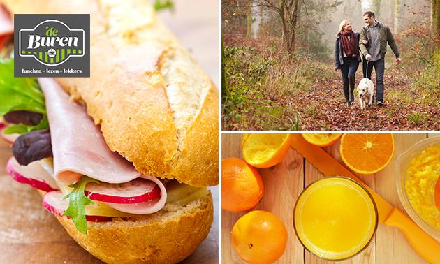 Wandelarrangement + koffie/thee + gebak + lunch to go