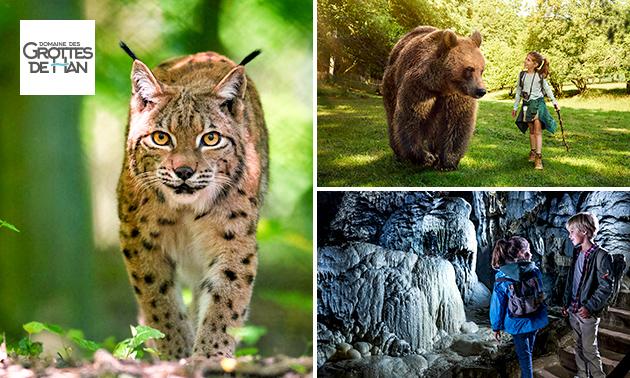 Entree tot Grot van Han, Wildpark en meer