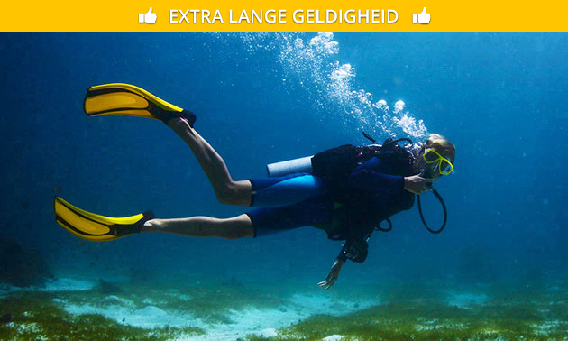 Snorkelen of duiken bij Duikschool divearound