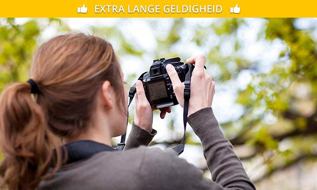 Workshop stads- of natuurfotografie (4 uur)