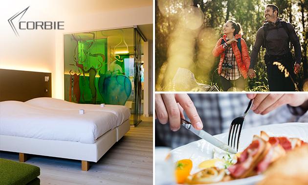 3-daags hotel- en wandelarrangement in het Grote Netewoud