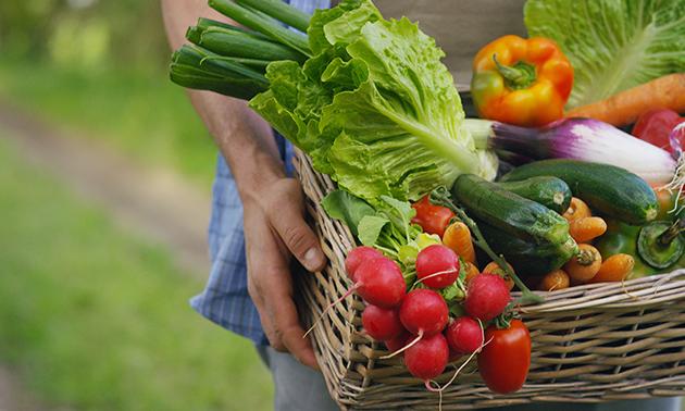 Thuisbezorgd of afhalen: groente- en/of fruitbox