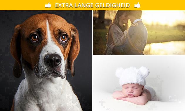 Fotoshoot (1 tot 5 personen) + 1 of 3 digitale foto's