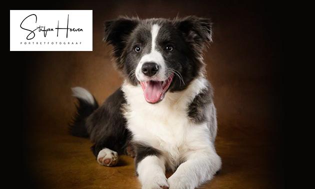 Fotoshoot voor 1 tot 5 personen óf met je hond