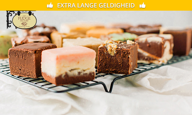 Thuisbezorgd of afhalen: fudge (500 gram)