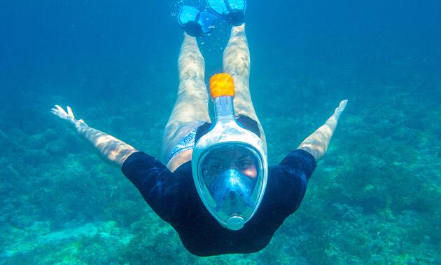Snorkel-les (2 uur) + gratis snorkelmasker