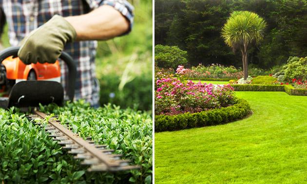 4 uur professioneel tuinonderhoud