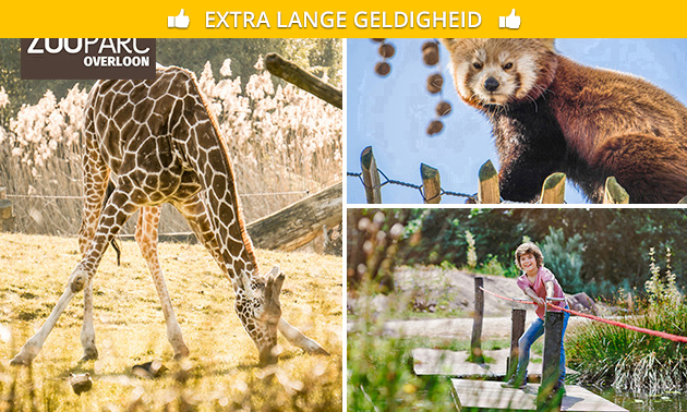 Entree ZooParc Overloon